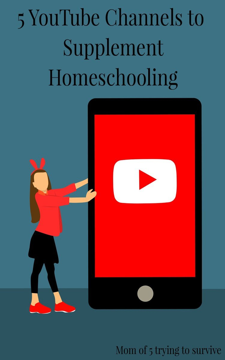 5 YouTube Channels to Supplement Homeschooling My kids LOVE watching these channels! They are having fun learning and I don't feel guilty that they are on electronics!